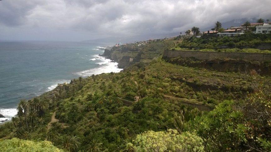 Teneryfa – wyspa dlapalmiarza